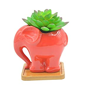 Cuteforyou Cute Cartoon Animal Elephant Shaped Ceramic Succulent Cactus Vase Flower Pot with Bamboo Tray - Red (Plant Not Included)