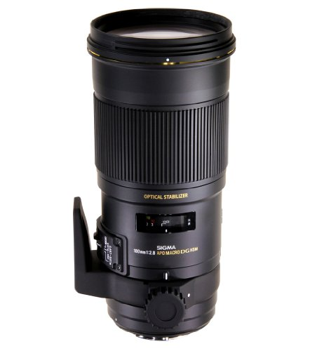 Highest Rated Sigma DSLR Lenses