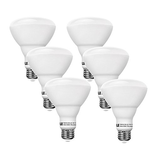 LE 6 Pack 65W Incandescent Bulb Equivalent, 10W...