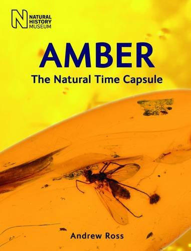 Amber: The Natural Time Capsule Paperback – February 11, 2010 Andrew Ross The Natural History Museum 0565092588 NATURE / Fossils