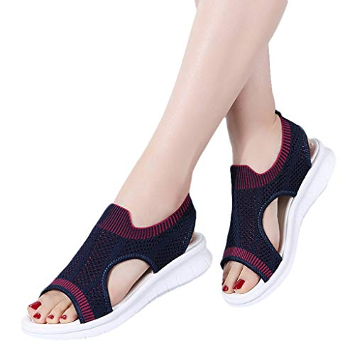Pant Expedition Blue (TnaIolral 2019 Women Sandals Open Toe Breathable Comfort Hollow Out Summer Wedges Mesh Shoes (US:5.5, Dark Blue))