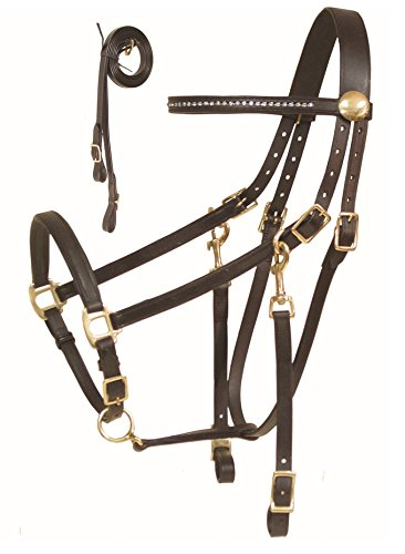 Halter Combo - Derby Rhinestone Halter Bridle Combo with Reins Pony, Cob, Horse, and Draft! (Havana, Full (Horse))