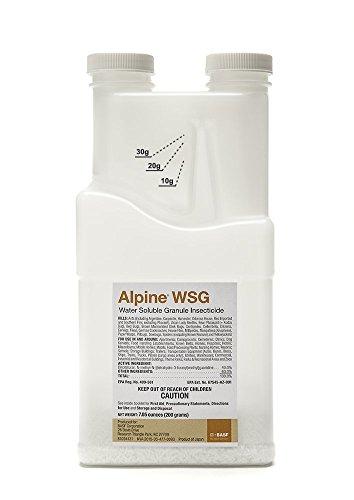 Alpine WSG 500g Jar by DavesPestDefense