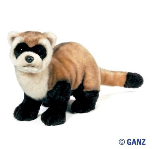 Webkinz Signature Black Footed Ferret with Trading Cards]()