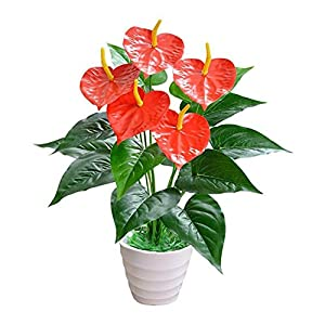 MARJON Flowers Artificial Red Anthurium Leaves Fake Flower Plastic Plant Home Table Vase Garden Office Shop Decoration Green + Red 59
