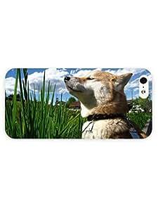 3d Full Wrap Case for iPhone 5/5s Animal Dog Enjoying The Sun87