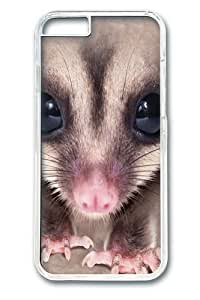 Big Face Sugar Glider Custom iphone 6 plus 5.5 inch Case Cover Polycarbonate Transparent