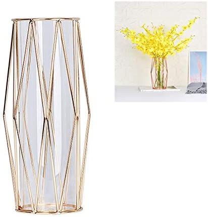 Tube Shape Glass Planter Vases with Geometric Metal Stand Plant Pot Decoration