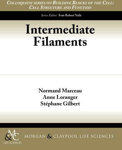 Intermediate Filaments - 3