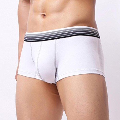cortos y Calzoncillo suaves ultra c de Hombre abultados Aimee7 interior Calzoncillos Calzoncillos Ropa bolsillo Calzoncillos HqUxwzSx
