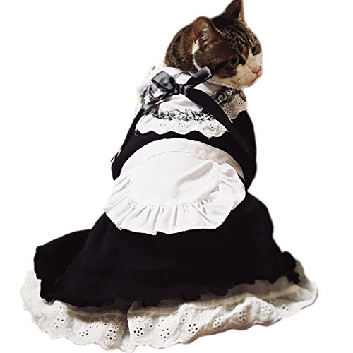 Alfie Pet by Petoga Couture - Teresa the French Maid for Party Halloween Special Events Costume - Size: (French Maid Party)