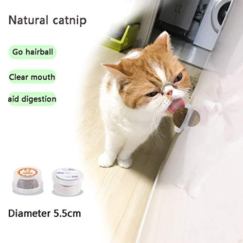 (Fanxieast Cat Mint Ball Stick Rod Catnip Candy Toy, Cat Dental Chews Catnip 100% Natural Cat Teeth Cleaning Catnip Cat Entertainment Toys Healthy Teeth Oral Care (Catnip)