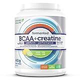 Best Creatine-bpi-sports - Genuine Health fermented BCAA+ creatine lemon-lime- 440 grams Review