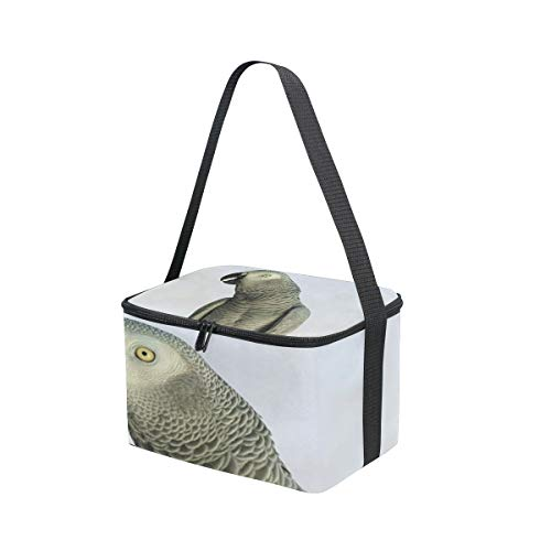 Cooler Picnic Lunchbox an for Shoulder Grey Bag Lunch African Parrot Congo Strap Pxq7178ZwY