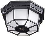 Heath Zenith HZ-4300-BK Ceiling Motion Light, Black