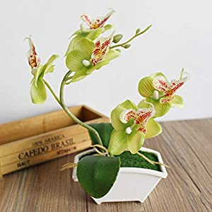 Artificial & Dried Flowers - Artificial Butterfly Orchid Simulation Flower Set With Real Touch Leaves Fashion Plants Overall - Butterfly Flower Orchid Simulation Orchids Flowers Artificial Purple 41