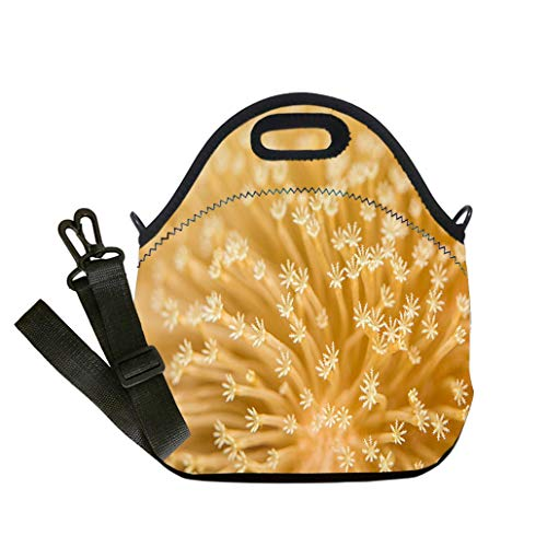 Custom Digital Printing Insulated Lunch Bag,Neoprene Lunch Tote Bags Toadstool Mushroom Leather Coral Multicolor,for Adults and children waterproof Lunch Box