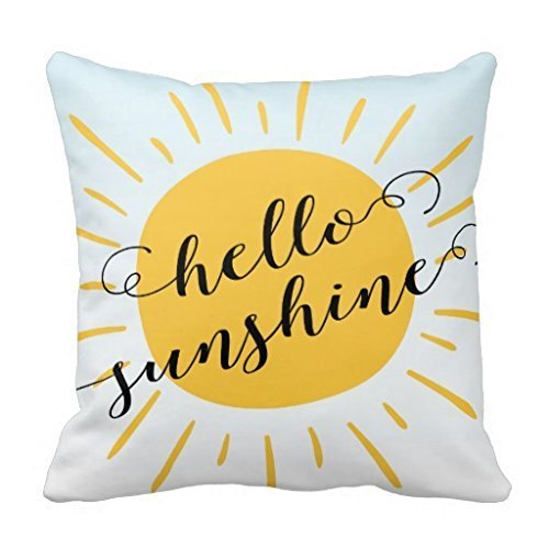 Modern Sunshine Decorative R271a6bc25e7c4d438b84b77b3058cfd8 Pillow product image