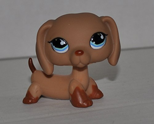 n, Blue eyes) - Littlest Pet Shop (Retired) Collector Toy - LPS Collectible Replacement Single Figure - Loose (OOP Out of Package & Print) ()