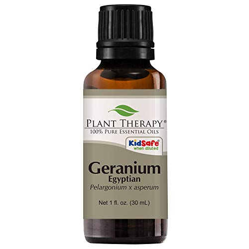Plant Therapy Geranium Egyptian Essential Oil. 100% Pure, Undiluted, Therapeutic Grade. 30 mL (1 Fluid Ounce).