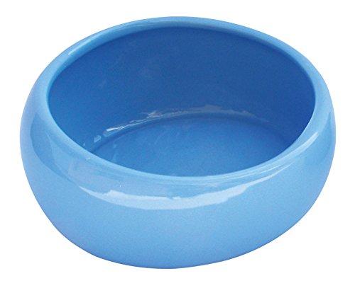 (Living World Ergonomic Dish, Blue, Large)
