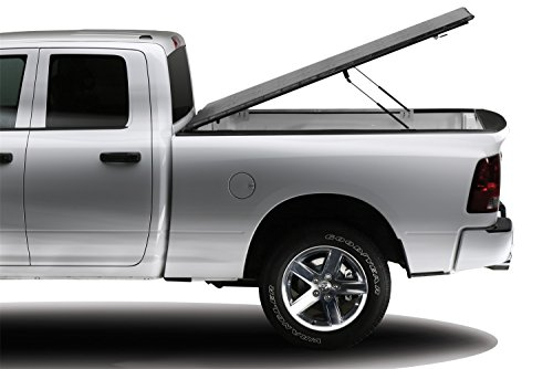 - Extang 38780 Full Tilt Snapless Hinged Tonneau Cover - fits F150 (5 1/2 ft bed) 04-08