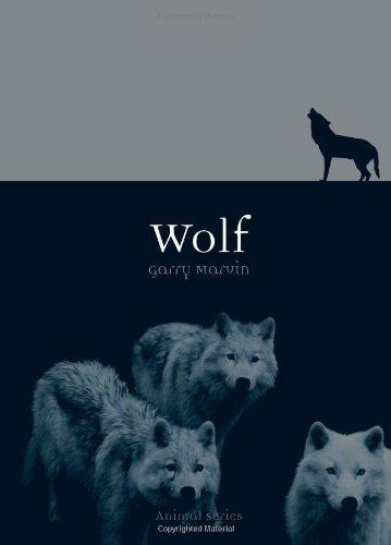 Wolf (Animal)
