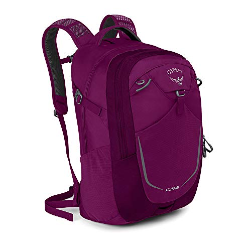 Osprey Packs Flare Backpack - Eggplant
