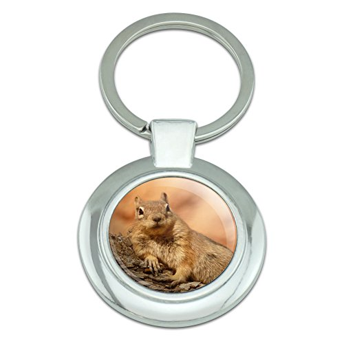 Graphics and More Ground Squirrel Resting Classy Round Chrome Plated Metal - Metals Round Ground