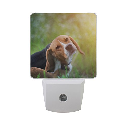 LED Night Light Beagle Dog Auto Senor Dusk to Dawn Night Light Great for Bedroom Bathroom Living Room Hallway Any Dark Room, for Child and Adults by Saobao