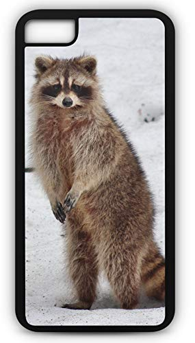 iPhone 6 Plus 6+ Case Raccoon Ring Tail Coon Skin Cap Mammal Wild Customizable by TYD Designs in Black Plastic Black Rubber Tough Case ()