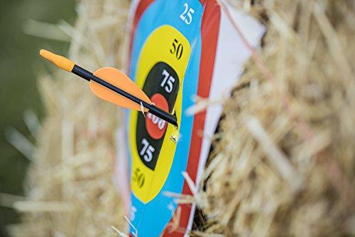 "Bear Archery Youth Safetyglass Arrows (3 Per Card) –26"""