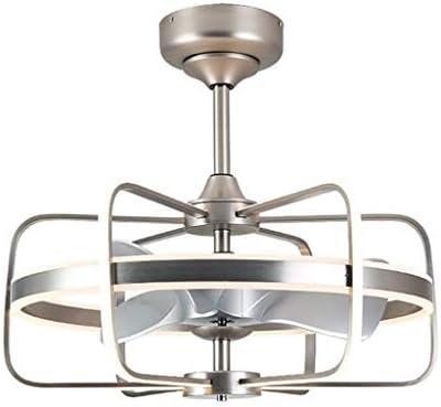 Luz del ventilador de techo Techo llevó la luz del restaurante del ...