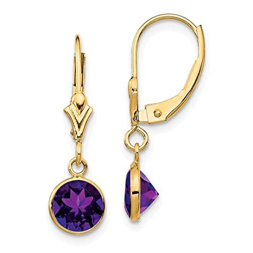 (14k Yellow Gold Purple Amethyst Leverback Earrings Lever Back Drop Dangle Fine Jewelry For Women Gift Set)