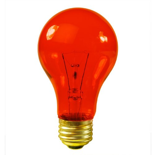 Bulbrite 105525 25W Transparent Orange A19 Bulb, 1-Pack