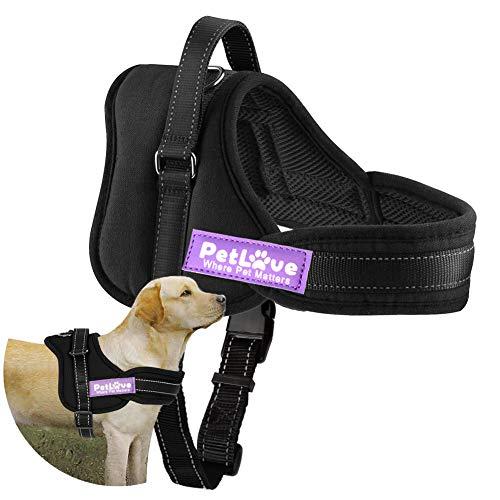 PetLove Upgraded Version Dog