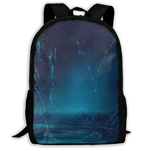 Laptop Backpack Pisces Constellation Painting Zipper College Bookbag Daypack Travel Rucksack Gym Bag For Man Women