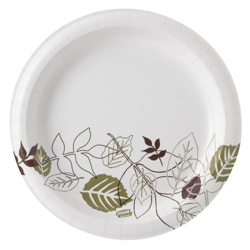 Dixie Ultra SXP9PATH Pathways Wise Size Heavy Weight Paper Plate 8.5\  Diameter (Case of 4 Packs 125 Plates per Pack)  sc 1 st  Amazon.com & Strong Paper Plates: Amazon.com