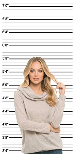 Mugshot Backdrop - Bachelorette Party Prop - Birthday Photo Booth Background Speakeasy - Height Chart (Photo Jail)