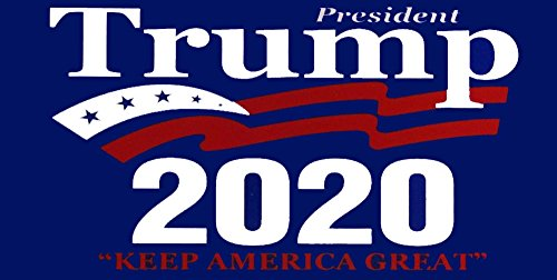 (AES Industries Wholesale Lot of 6 President Trump 2020 Keep America Great Decal Bumper)