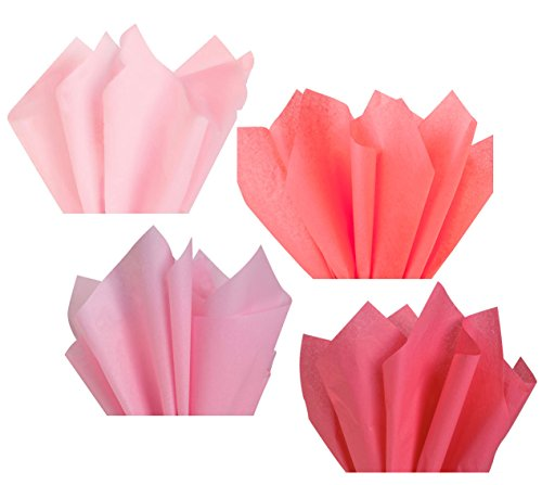 Light Pink Blush Rose Salmon Coral Assorted Mixed Color Multi-Pack Tissue Paper for Flower Pom Poms Art Craft Wedding Bridal Baby Shower Party Gift Bag Basket Filler Decor (120 Sheets, 15