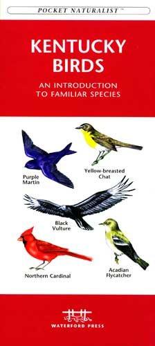 kentucky_birds