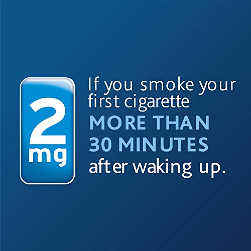 Nicorette Nicotine Gum to Stop Smoking, 2mg, Cinnamon Surge, 160 Count
