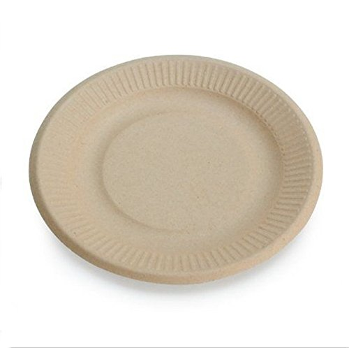 NEW Plate Natural Alternative Wheat Straw Fiber, Bagasse Sugarcane Tree Free 6