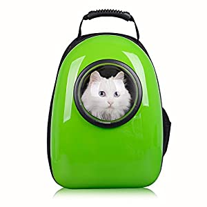 21. Pettom Dog Cat Pet Carrier Backpack Airline Approved Travel Hiking Bubble Backpack