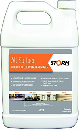 CALIFORNIA PAINT - STORM STAIN 40210 1G STAIN REMOVER 402101 by Storm System
