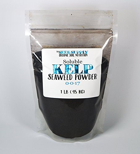 1 Pound Soluble Kelp Seaweed Powder - Plant Root Development and Growth Stimulant 0-0-17 Organic - Soluble Powder Seaweed