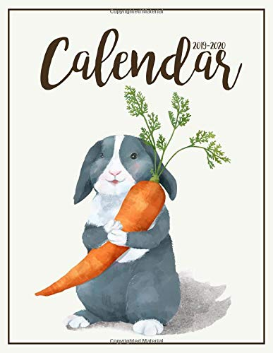 2019-2020 Calendar Two Years | January 2019 to December 2020 Daily Weekly Monthly Calendar Planner With To Do List | Happy Rabbit Cover [Jacquez, Kim R.] (Tapa Blanda)