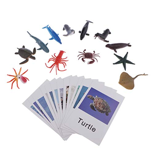 Educational Toys Octopus With Best Design, Montessori Ocean Animal Match Cards And Figurines Matching Game Learning - Wooden Animal Wheels, Preschool Puzzles Lot, Miniature Sharks (Free Learning Games For Babie)