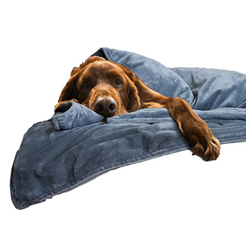 The Original Canine Coddler Anti Anxiety Weighted Dog Blanket for Stress Relief | Compression Wrap with Premium Washable Cover | Great for Separation Anxiety | for Dogs Over 50 Lbs